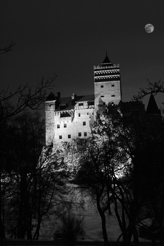 The Bran Castle in the night
