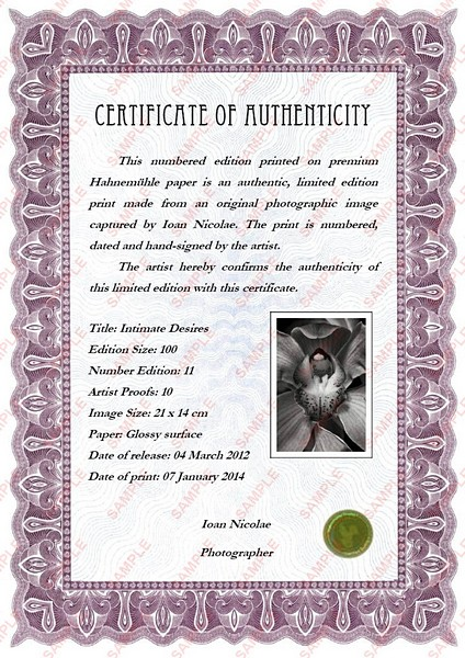 Ioan Nicolae - Certificate of Authenticity
